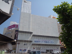 P7080075 .JPG
